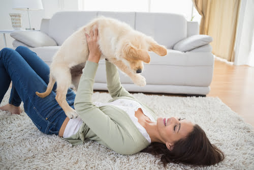 Being a first-time pet owner is like being a new parent – or rather it is being a new parent.