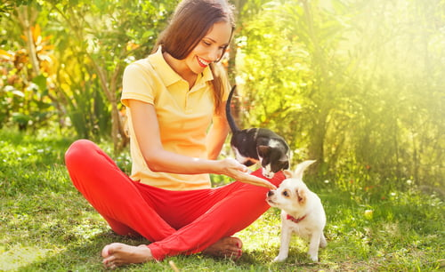 As dedicated pet parents, love your pet day is not just once a year, it's every day.