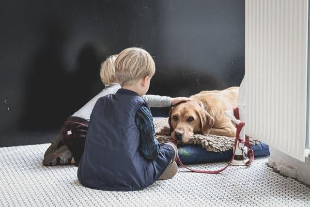 golden retriever dog and kids sitting together on floor