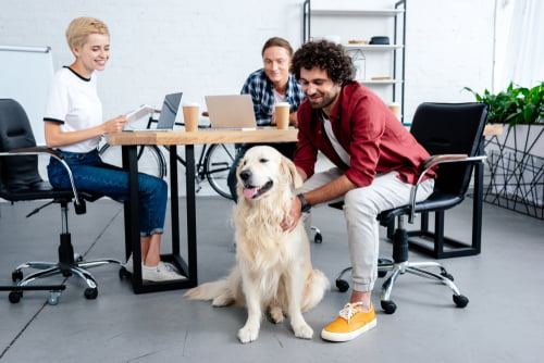 These colleagues celebrate Bring Your Dog to Work Day, 25 June.