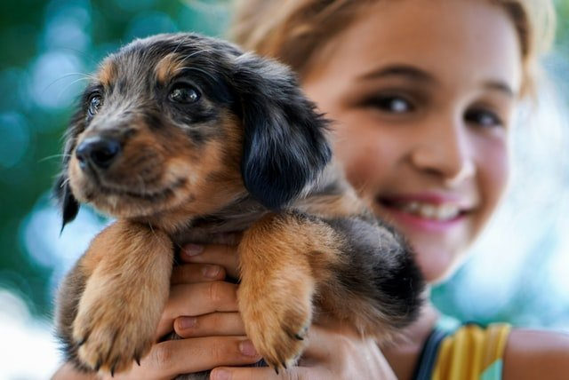 A girl with the family pet dog