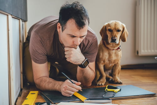 Plan home renovations well, so protect your pet.