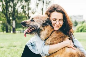 older dogs for adoption in nz can bring joy