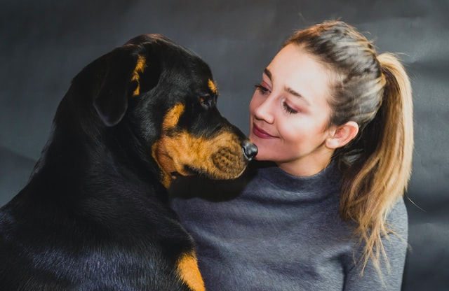 blonde woman sitting with her Rottweiler face to face